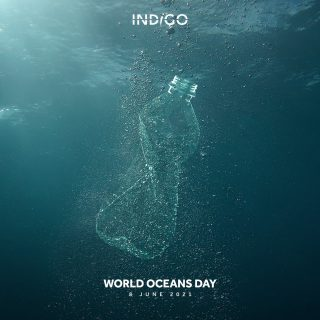"""World Oceans day marks a pivotal day. Today is the day we speak openly about how important water is to us. How it sustains us and protects the world within it. This year's theme is """"The Ocean: Life and Livelihoods"""". The way we protect the ocean is the first step to protecting our future.   The ocean covers 70% of the planet and produces 50% of the planet's oxygen. But this is where we stand; In 2021 we, as humans, have depleted 90% of big fish populations and destroyed 50% of coral reefs. Is this how we want to proceed with our lives?   We have to stop taking from the ocean and work to create a new balance, deeply rooted in true reason and understanding of the ocean and how our race is tied to it.   We pledge to create practices that protect and preserve our oceans. We pledge to do everything in our power to become more responsible and accountable for our actions. Doing our part for the future of our oceans is crucial because our survival depends on it.  #worldoceansday #deniminpakistan #sustainability #blueforblue #dyenamic #madeinpakistan #worldofdenim #denim #denimdesign #designthinking #denimlife #denimgoods #denimbrand #denimblue"""